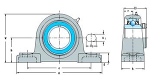 HCAK Series(Pillow Block Bearings)