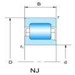 NJ2,3,10,22,23 (single row Cylindrical roller bearings)